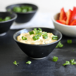 Healthy Chipotle Lime Taco Dip - dairy free
