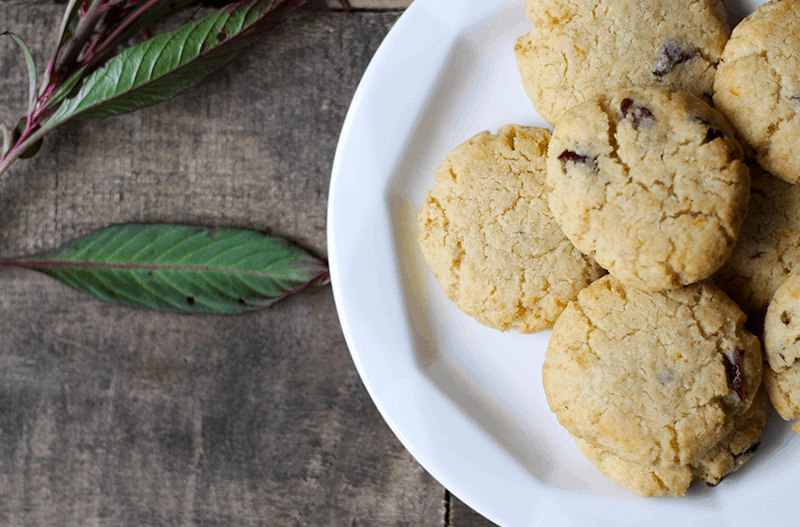 AIP Cranberry Grapefruit Cookies
