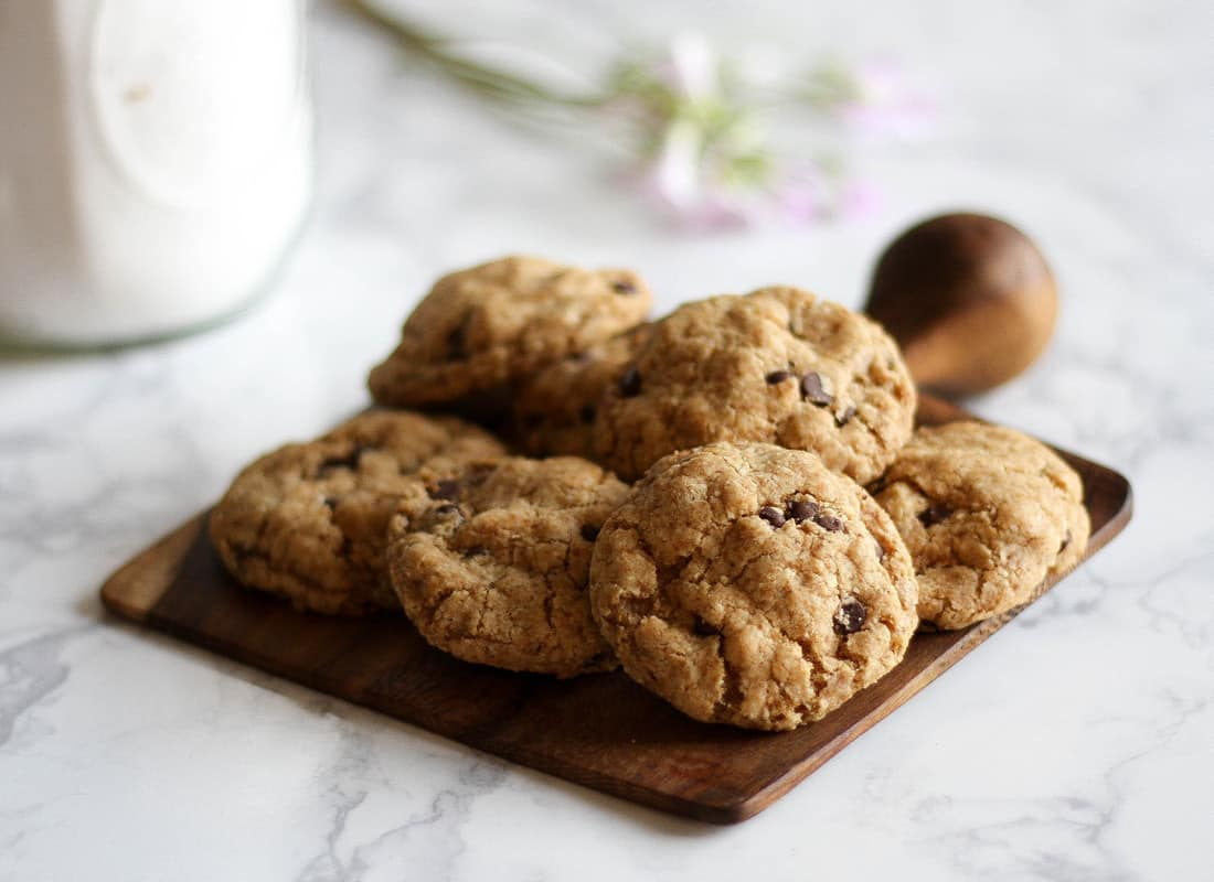 Get this Paleo friendly recipe which makes THE BEST gluten free Chocolate Chip Cookies. The recipe is egg free, nut free, refined sugar free, and grain free, and there is the option for an AIP modification.