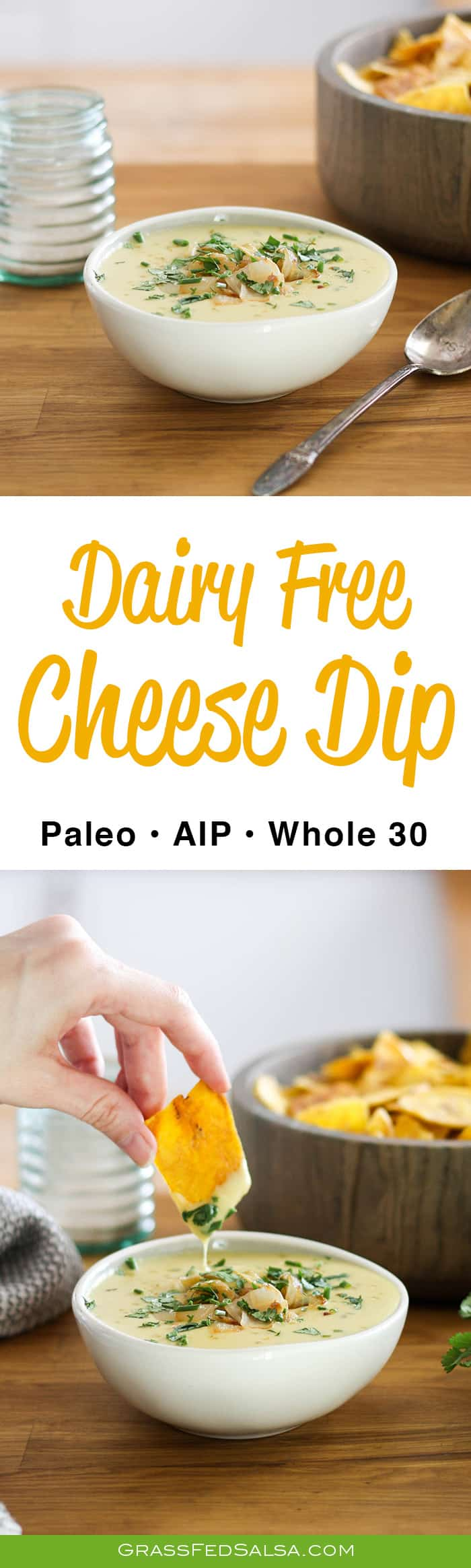 dairy free cheese dip for veggies or nachos. AIP, paleo, whole 30, and vegan.